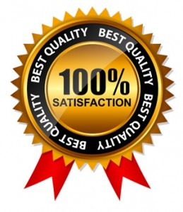 Vector 100% Satisfaction  Gold Label Set with Red Ribbon.